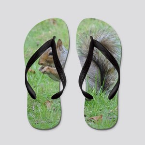 Squirrel Flip Flops